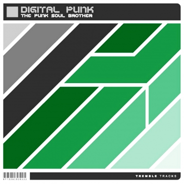 Digital Punk - The punk soul brother