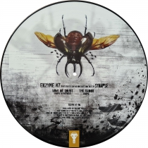 Synapse - Vows of doubt (picture disc!)