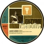 5 Years of Enzyme Records (picture disc)